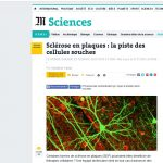 copie ecran site le monde sciences cellules souches et sep