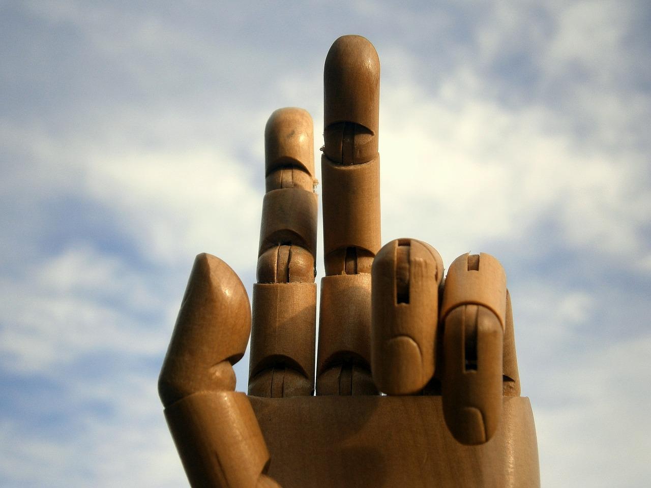main articulee en bois faire face toute l 39 actualit du handicap. Black Bedroom Furniture Sets. Home Design Ideas